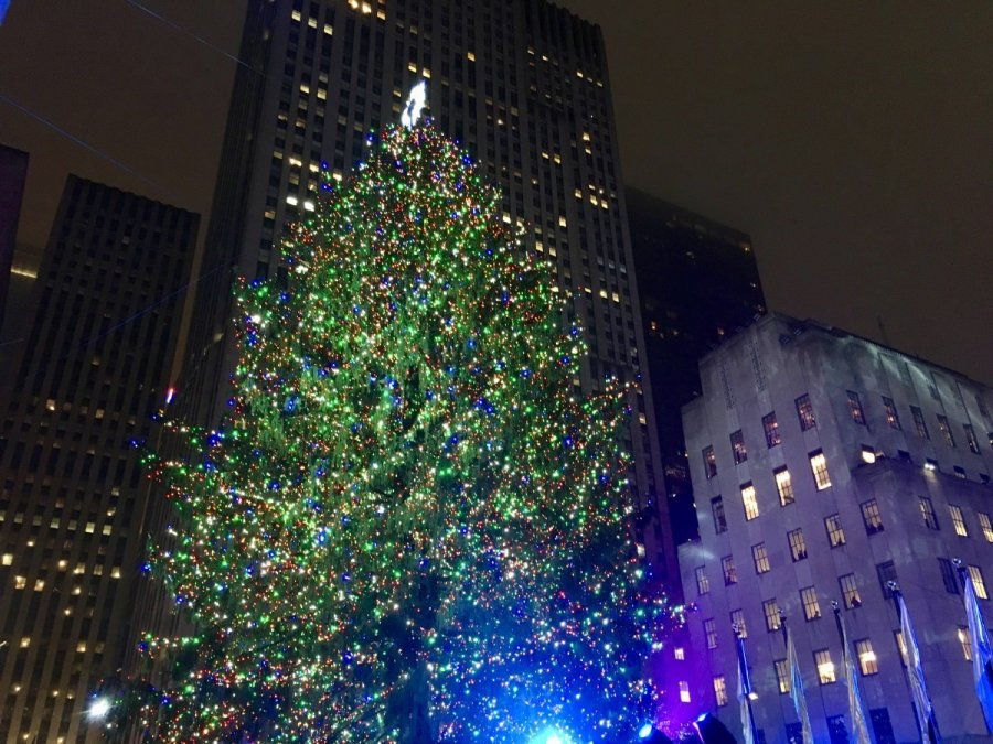 nyc fall autumn rockefeller christmas tree